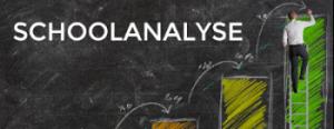 schoolanalyse logo